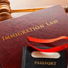 консультация миграционного юриста