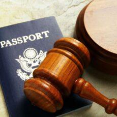 услуги миграционного юриста