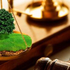 Юрист по земельным делам